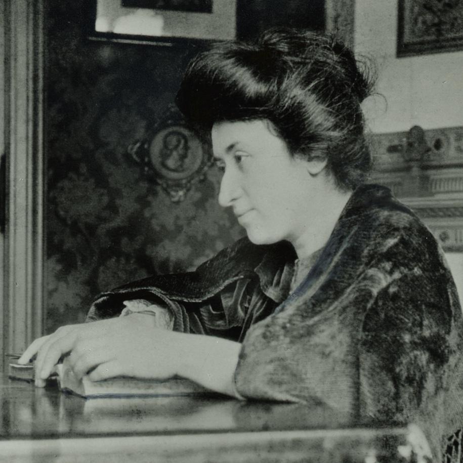 Rosa Luxemburg Als Politikerin Die Freiheitsliebe