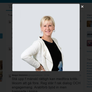 Screenshot: Margot Wallström on Twitter