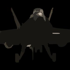 Jet Kampfjet Flugzeug NATO pixabay
