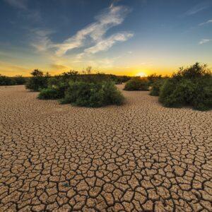 Klimawandel nimmt immer bedrohlichere Formen an – Das Schlimmste kommt erst noch